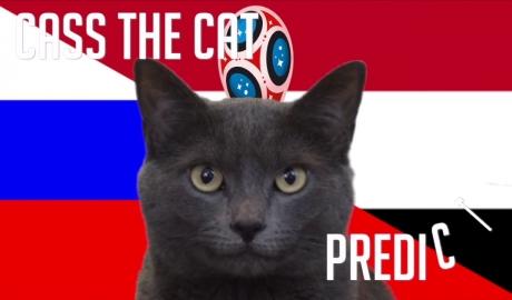 Mèo tiên tri dự đoán Nga sẽ thất bại trước Ai Cập